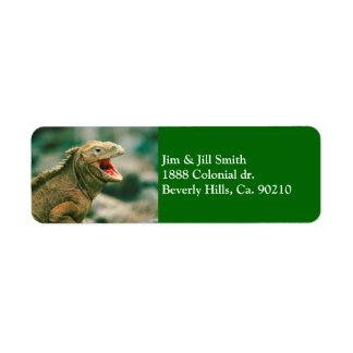 Iguana Says Rawr Return Address Label