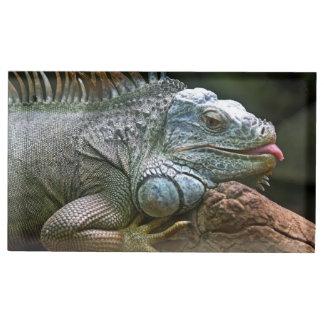Iguana table card holder