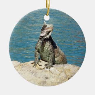 Iguana Tropical Wildlife Round Ceramic Decoration