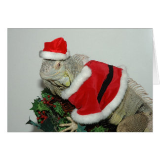 Iguana wish you a Merry Christmas Greeting Card