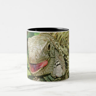 Iguanas Two-Tone Coffee Mug