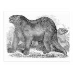 Iguanodon Antique Print Postcard