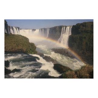 Iguassu Falls, Parana State, Brazil. Aerial view Wood Wall Decor