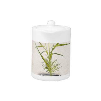ikebana 11 by tony fernandes
