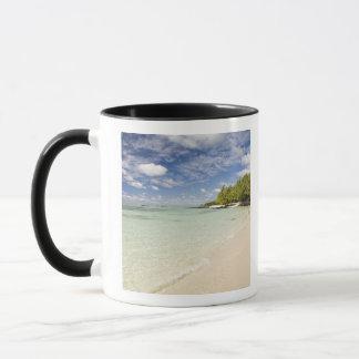 Ile Aux Cerf, most popular day trip for 2 Mug