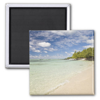 Ile Aux Cerf, most popular day trip for 2 Square Magnet