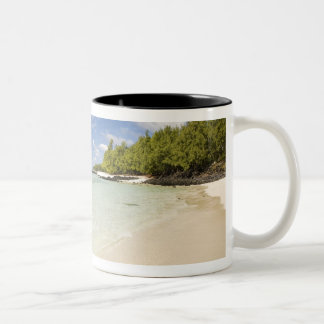 Ile Aux Cerf, most popular day trip for 2 Two-Tone Coffee Mug