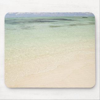Ile Aux Cerf, most popular day trip for Mouse Mat