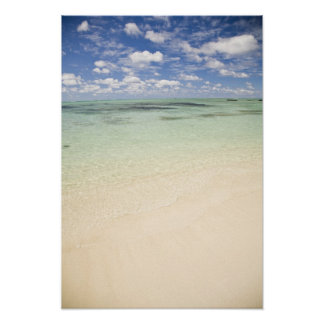Ile Aux Cerf, most popular day trip for Poster