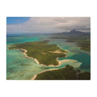 Ile Aux Cerfs, Mauritius Wood Print