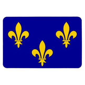 Ile de France region flag Vinyl Magnets