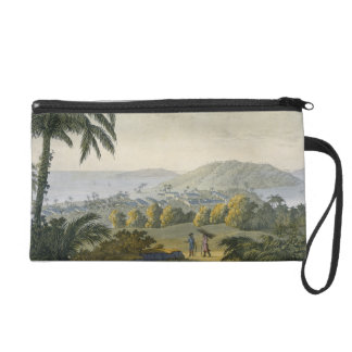 Ilheus (colour engraving) wristlet clutches