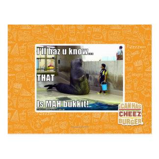I'll haz u know postcard