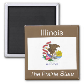 Illinois Flag Magnet