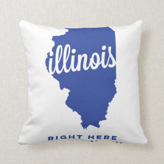 illinois | right here, right now | blue throw cushions