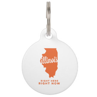 illinois | right here, right now | orange pet ID tag