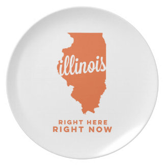 illinois | right here, right now | orange plate