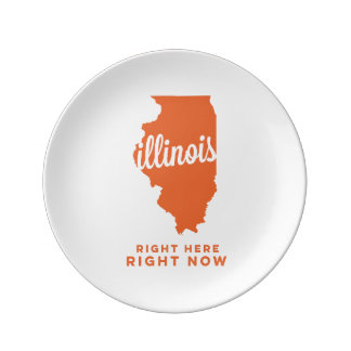 illinois | right here, right now | orange porcelain plates