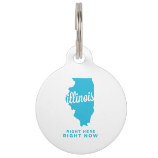 illinois | right here, right now | sky blue pet name tags