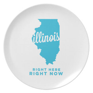 illinois | right here, right now | sky blue plate