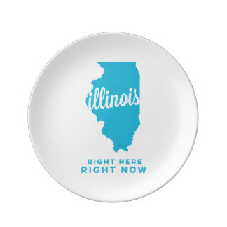 illinois | right here, right now | sky blue porcelain plate