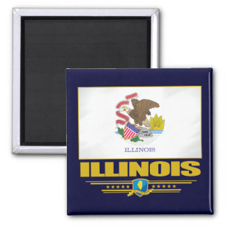 Illinois (SP) Square Magnet