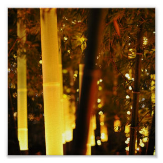Illuminated Bamboo. Tokyo, Japan. Poster