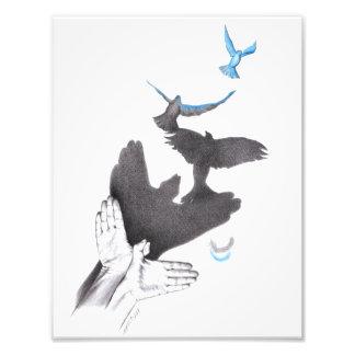 Illusions hands shadow birds Photo prints