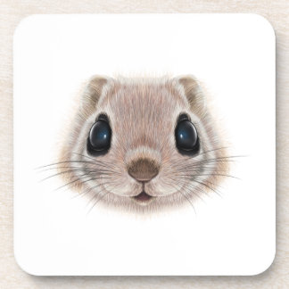 Illustrated portrait of Flying squirrel. Beverage Coasters