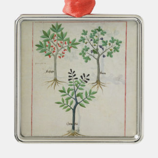 Illustration from the 'Book of Simple Medicines' 2 Christmas Ornament