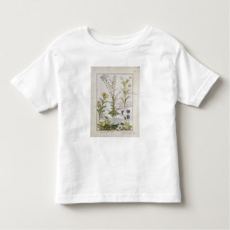 Illustration from the 'Book of Simple Medicines' 2 Toddler T-Shirt