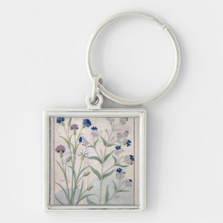 Illustration from the 'Book of Simple Medicines' 3 Silver-Colored Square Key Ring