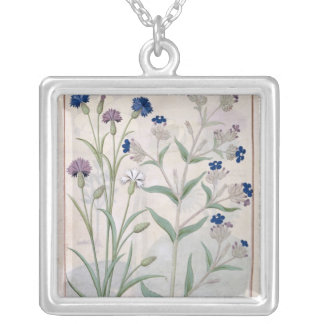 Illustration from the 'Book of Simple Medicines' 3 Silver Plated Necklace