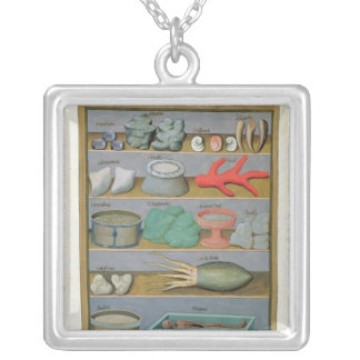Illustration from the 'Book of Simple Medicines' Square Pendant Necklace