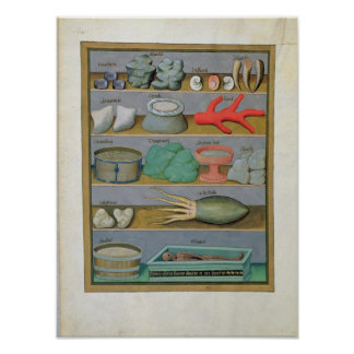 Illustration from the 'Book of Simple Medicines' Poster