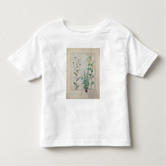 Illustration from 'The Book of Simple Toddler T-Shirt