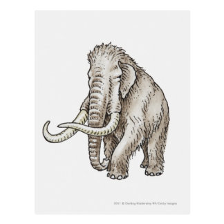 Illustration of a mammoth postcard