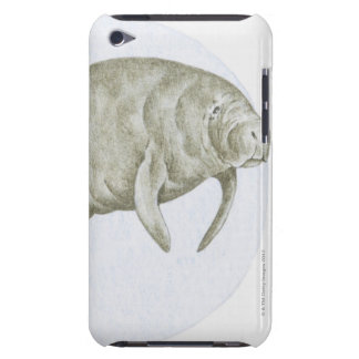 Illustration of a Manatee (Trichechus sp.) Barely There iPod Cases