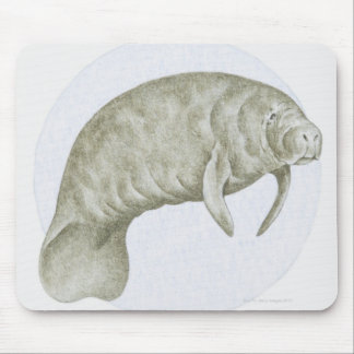 Illustration of a Manatee (Trichechus sp.) Mouse Mat
