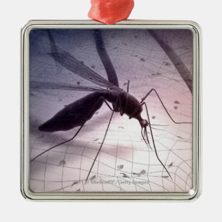 Illustration of a mosquito biting christmas ornament
