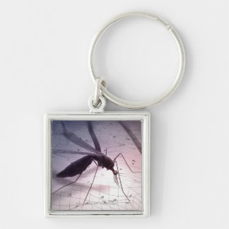 Illustration of a mosquito biting Silver-Colored square key ring