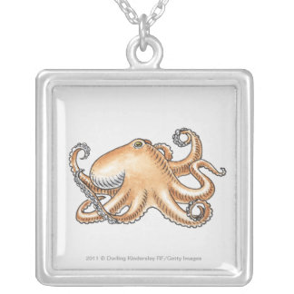 Illustration of an octopus silver plated necklace