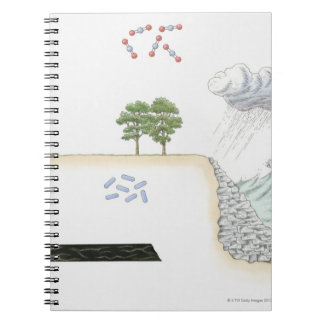 Illustration of carbon cycle on Earth Notebook