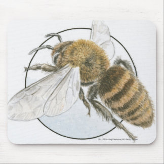 Illustration of European Honey Bee Mouse Mat