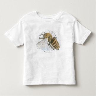 Illustration of European Honey Bee Toddler T-Shirt