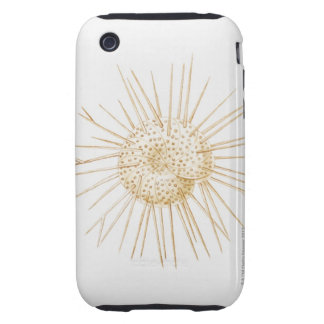 Illustration of foraminiferan shell tough iPhone 3 case