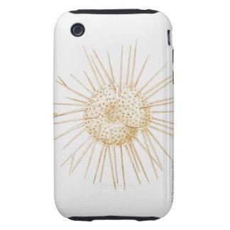 Illustration of foraminiferan shell tough iPhone 3 case