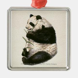 Illustration of Giant panda feeding on bamboo Christmas Ornament