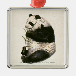 Illustration of Giant panda feeding on bamboo Silver-Colored Square Decoration