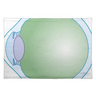 Illustration of Human Eye Placemat